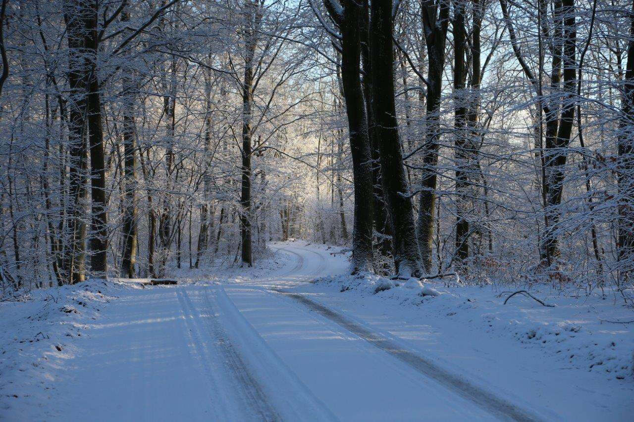 2016-01-13 vinter Annika
